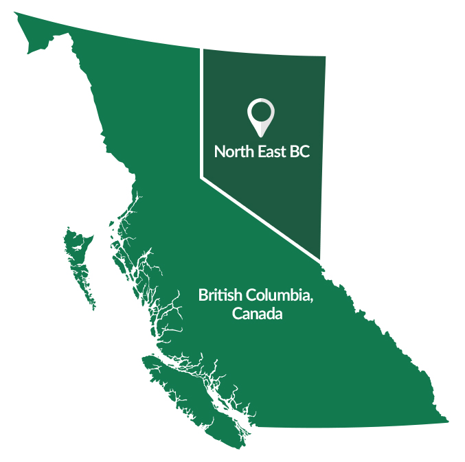North East BC Real Estate